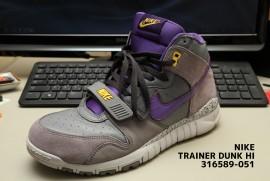 nike trainer dunk hi 316589-051