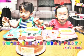 2014 7 7 twins 2nd birthday party