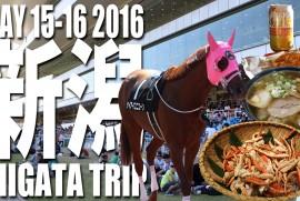 2016 5 15 16 新潟 瀬波温泉ツアー
