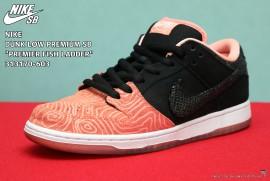 DUNK LOW PREMIUM SB PREMIER FISH LADDER 313170-603